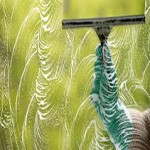 Window Cleaning Worthing