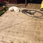 domestic decking cleaning