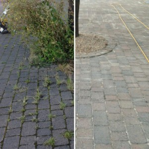 garden brickwork cleaning